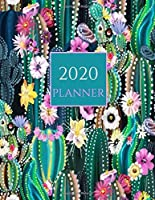 2020 Planner: Vibrant Cactus Watercolor 2020 Organizer; Monthly and Weekly 2020 Planner Journal (Planners & Organizers)