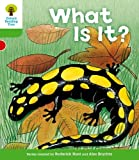 Oxford Reading Tree: Level 2: More Patterned Stories A: What Is It?