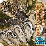 こだわりの殻付き1年牡蠣 (兵庫県相生産)  こだわりの牡蠣工房ふくえい (5kg)