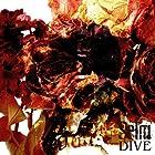 DIVE()