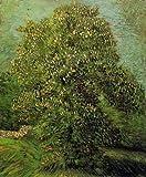 Vincent Van Gogh Chestnut Tree In Blossom II 72x88