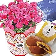 花のギフト社 母の日 カーネーション 文明堂 どら焼き 花とスイーツ 鉢花ギフト 鉢植え プレゼント