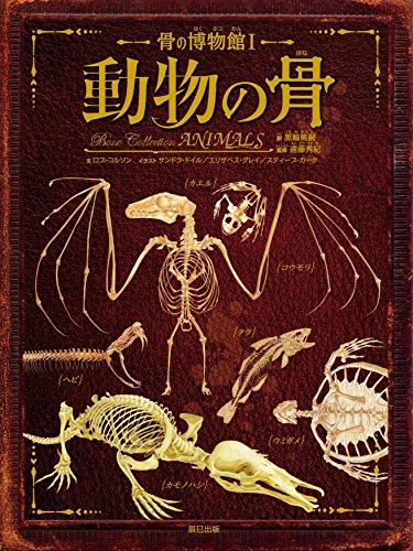 骨の博物館1 動物の骨 (骨の博物館 1)の詳細を見る