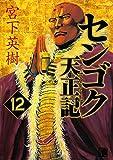 センゴク天正記(12) (ヤングマガジンコミックス)
