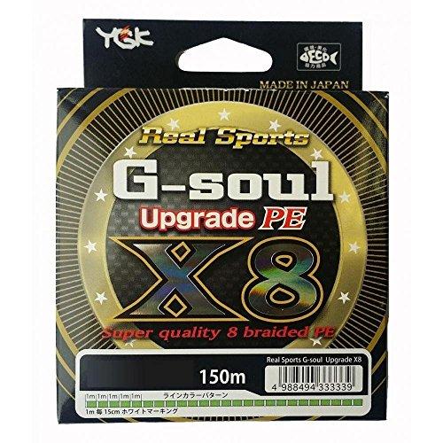 よつあみ G-soul X8 UPGRADE150m
