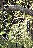 ヒグマが育てる森 画像