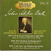Cantatas 176 20 & 2 Volume 39