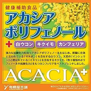アカシプラス アカシアポリフェノール 白ウコン キクイモ カンフェリア 150カプセル