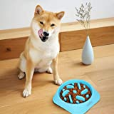 talify Dog Bowl Slow Feeder, Large 500ml Healthy Eating Pet Interactive Feeder with Anti-Skid Non-Slip Grip Base to Reduce Ov