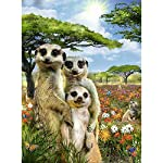 "TOOGOO 5D Diy Diamond Painting Full Square Drill""Meerkat Family"" 3D Embroidery Cross Stitch Gift Home Deco"