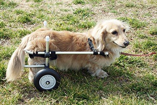 小型犬用2輪歩行器 車いす ダックス チワワ等 Sサイズ...