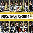 福岡ソフトバンクホークス 選手登場曲&ベストセレクション 2014