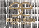 パンフレット ★ KinKi Kids 2001 「ふるさとEふれあいalbumキャンペーン 〜年末年始のドームコンサートの前にKinKiがあなたの街にやってくる〜」