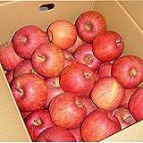 山形産 サンふじ りんご 5kg 約20玉前後 訳あり ご家庭用