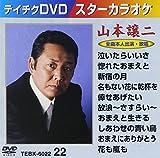 テイチクDVDカラオケ スターカラオケ(22) 山本譲二[DVD]