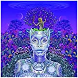 New Amerykah Part Two: Return Of The Ankh by Erykah Badu (2010-03-30)