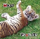 PUNK IT! MAX!