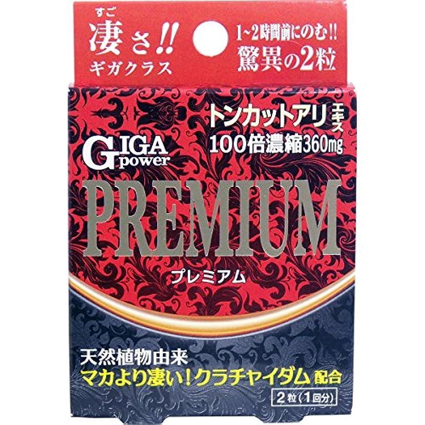 シールただ壮大な※ギガパワープレミアム 2粒(1回分)×20個セット