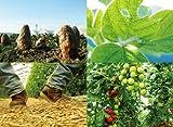 がちんこ農業生活 会社勤めよりは楽しいか? (P-Vine BOOks) 画像