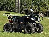 IceBear(アイスベアー) 四輪バギー ATV 50cc セミオートマ前進3速バック付 ミニカー登録 公道走行可 黒 HL50B
