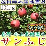 訳あり 【農園より産地直送】 長野県産 サンふじ りんご ご家庭用わけあり品 約9kg 24~50個入