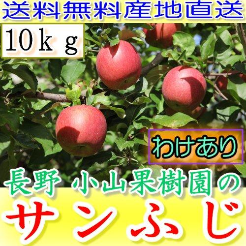 訳あり 【農園より産地直送】 長野県産 サンふじ りんご わけあり品 約9kg 24〜46個入