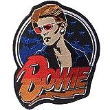 日本未発売 特大 刺繍 アイロンワッペン MC パッチ 高品質 David Bowieデビッド ボウイ BIG SIZE:20.0cm x 24.0cm