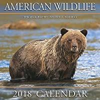 2018 Baliko American Wildlife Wall Calendar [並行輸入品]