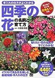 四季の花の名前と育て方