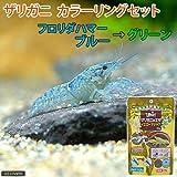 (ザリガニ)ザリガニカラーリングセット フロリダハマー Sサイズ(約2~5cm)(1匹)+ザリガニの餌 イエローマジック [生体]