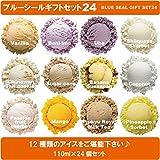 ブルーシール ギフトセット24 沖縄 定番 人気 アイスクリーム ブルーシールアイス お中元 お歳暮