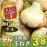 淡路島産 2017年 新玉ねぎ 3.8kg 淡路島玉ねぎ 早生(わせ)