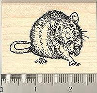 Rat Rubber Stamp, Realistic Pet Art