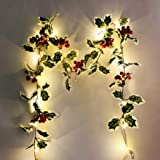 YURROAD Thanksgiving Christmas Red Fruit Rattan Garlands Waterproof String Lights Battery Lighting for Fall Harvest Festival