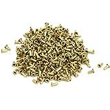 uxcell ナットリベット ゴールドトーン 銅メッキ M0.9x2.5mm スルーホール ブラインドナット 500個入り