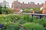 Gardens of the High Line: Elevating the Nature of Modern Landscapes 画像