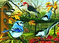 Cobblehill Puzzles Mo 1000 - Blue Jay And Friends