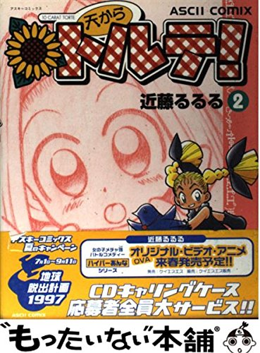 天からトルテ! 2 (アスキーコミックス)の詳細を見る