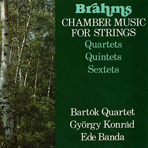 String Quintet No. 1 in F Major, Op. 88: II. Grave ed appassionato