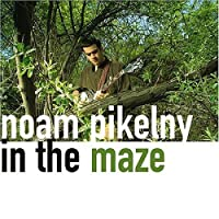 In the Maze by Noam Pikelny (2004-07-20)