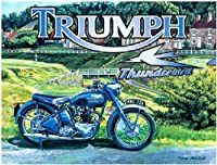 TriumphサンダーバードLargeメタルサイン( og 4030)