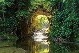 1000ピース ジグソーパズル 光差す濃溝の滝(千葉) (50x75cm)