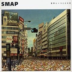 SMAP「世界に一つだけの花 (シングル・ヴァージョン)」のジャケット画像