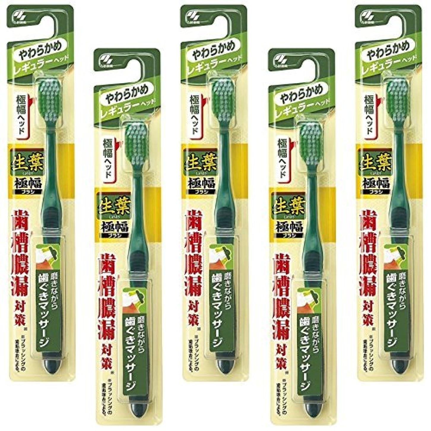 黙戦争植物学【まとめ買い】生葉(しょうよう)極幅ブラシ 歯ブラシ レギュラーヘッド やわらかめ×5個