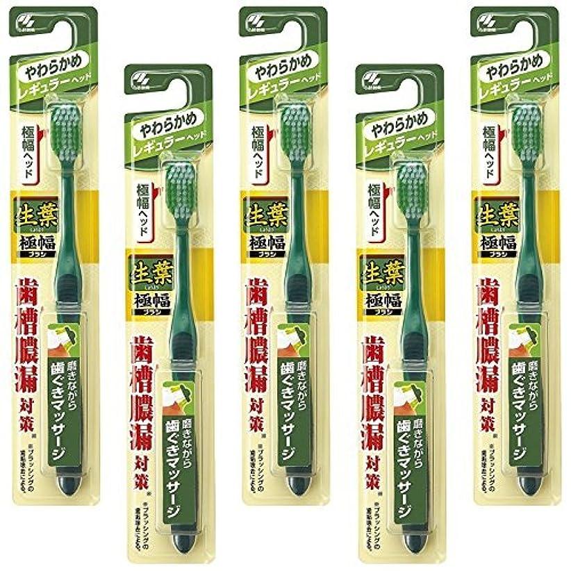 優れた付録有効化【まとめ買い】生葉(しょうよう)極幅ブラシ 歯ブラシ レギュラーヘッド やわらかめ×5個