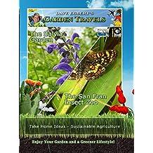 Garden Travels - The Salvia Garden - The San Fran Insect Zoo