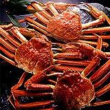 【ギフト・贈答】 超特大ずわい蟹 天然本ズワイガニ姿 1.3kg×1尾 ビッグサイズ