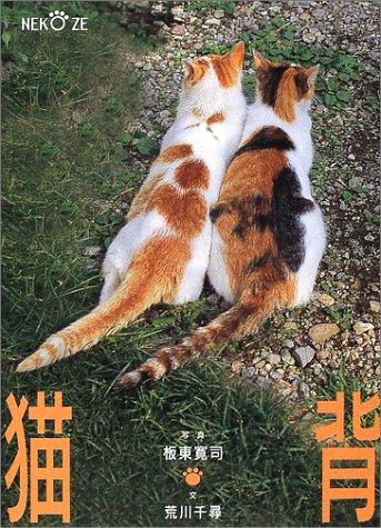 猫背―振り向かニャいでの詳細を見る