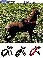 PRATIKO・プラティコ ハーネスエナジー 大型犬用 サイズ 2 (レッド)