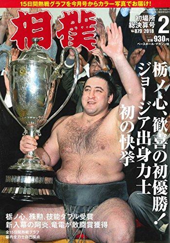 相撲 2018年02月号 初場所総決算号